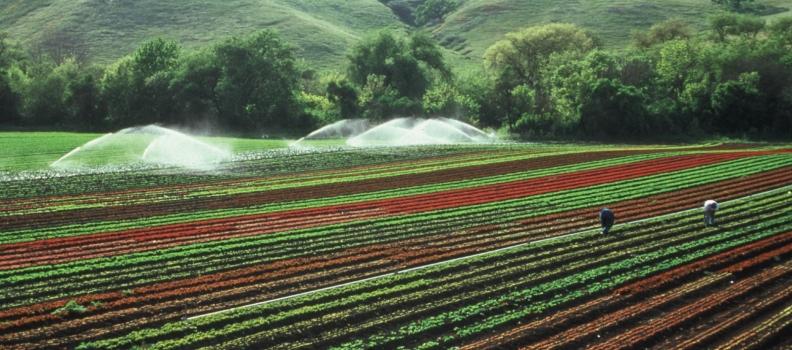 Recuperación y Utilización de Nutrientes para Fertilizantes de Bajo Impacto (RUN4LIFE)